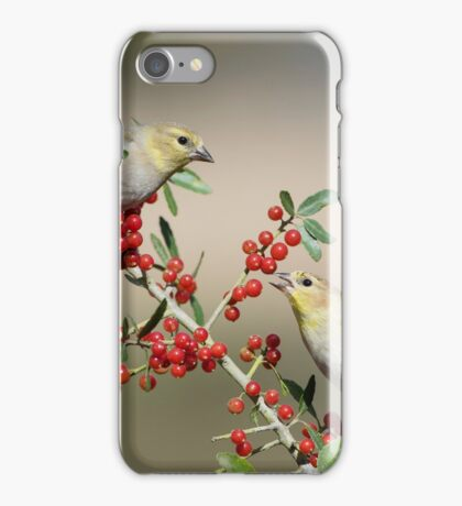 Goldfinches in Yaupon Holly Tree iPhone Case/Skin