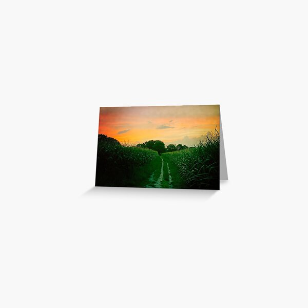 Sunset #2, Norg Netherlands  Greeting Card