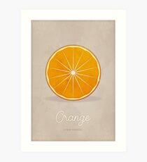 Orange (taupe) - Natural History Fruits Art Print