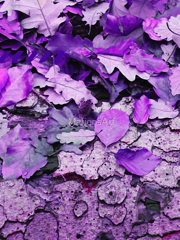 Leaves and bark in purple - the little beauties of nature by MarionsArt