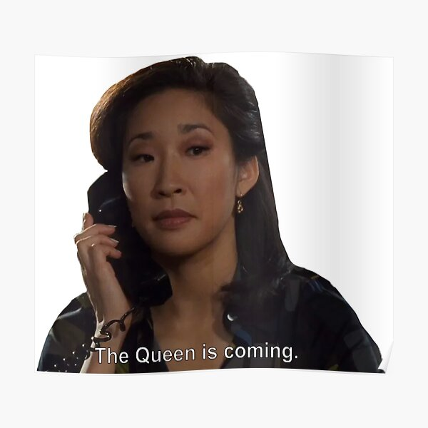 The Queen is Coming! Princess Diaries Poster