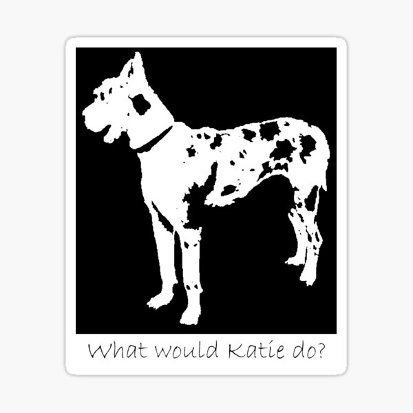 What would Katie do? The Worth of a Dog Sticker