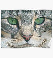Emerald Eyes Scratch Art Poster