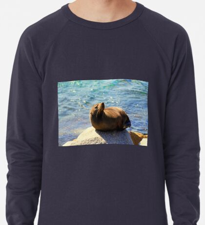 Robbe Sonnenbaden Leichtes Sweatshirt
