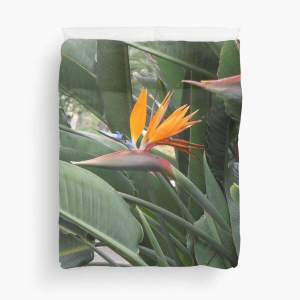 A beautiful Bird of paradise flower from Madeira Duvet Cover