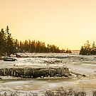 Frozen River in Arcadia by Debbie  Roberts