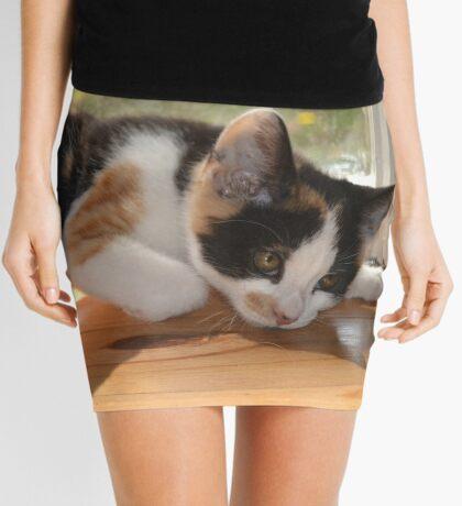 Funny as Mini Skirt