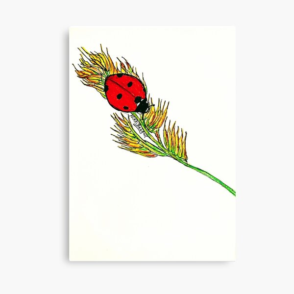 Ladybird Courage Canvas Print
