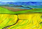 Canola fields in the Overberg by Elizabeth Kendall
