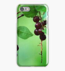 Mmmm... Choke Cherry Jelly iPhone Case/Skin