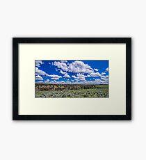 Big Sky and Sage Brush Framed Print