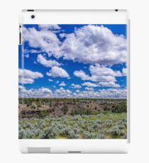 Big Sky and Sage Brush iPad Case/Skin