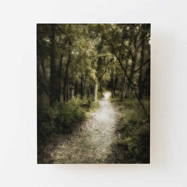 ethereal path Wood Mounted Print