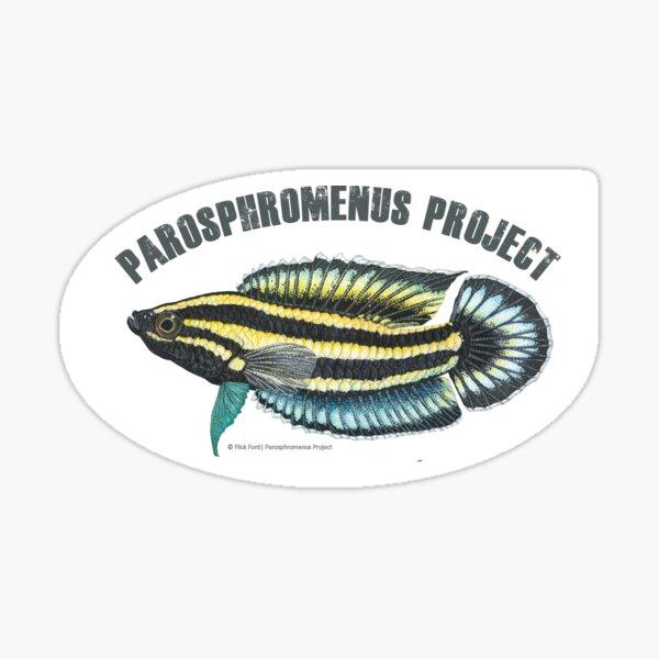 Parosphromenus harveyi painting Sticker