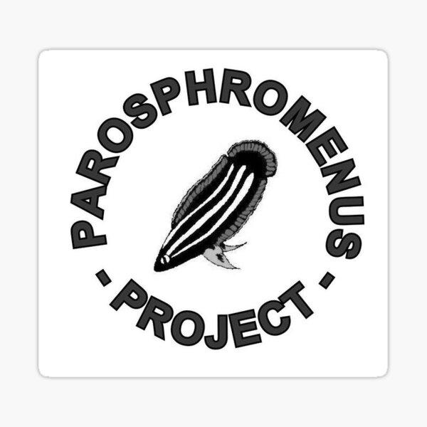 Parosphromenus project Sticker