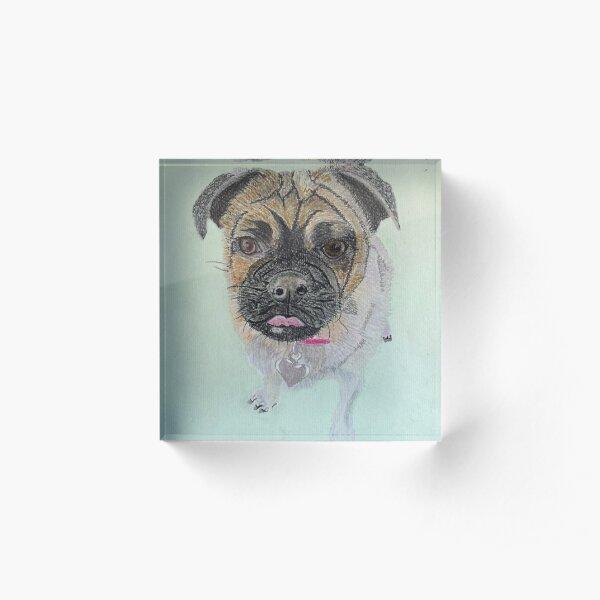 Pug Acrylic Block