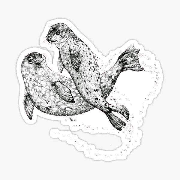 Swimming seals Sticker
