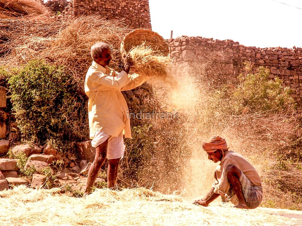 Husks and grains - Aihole, India by indiafrank