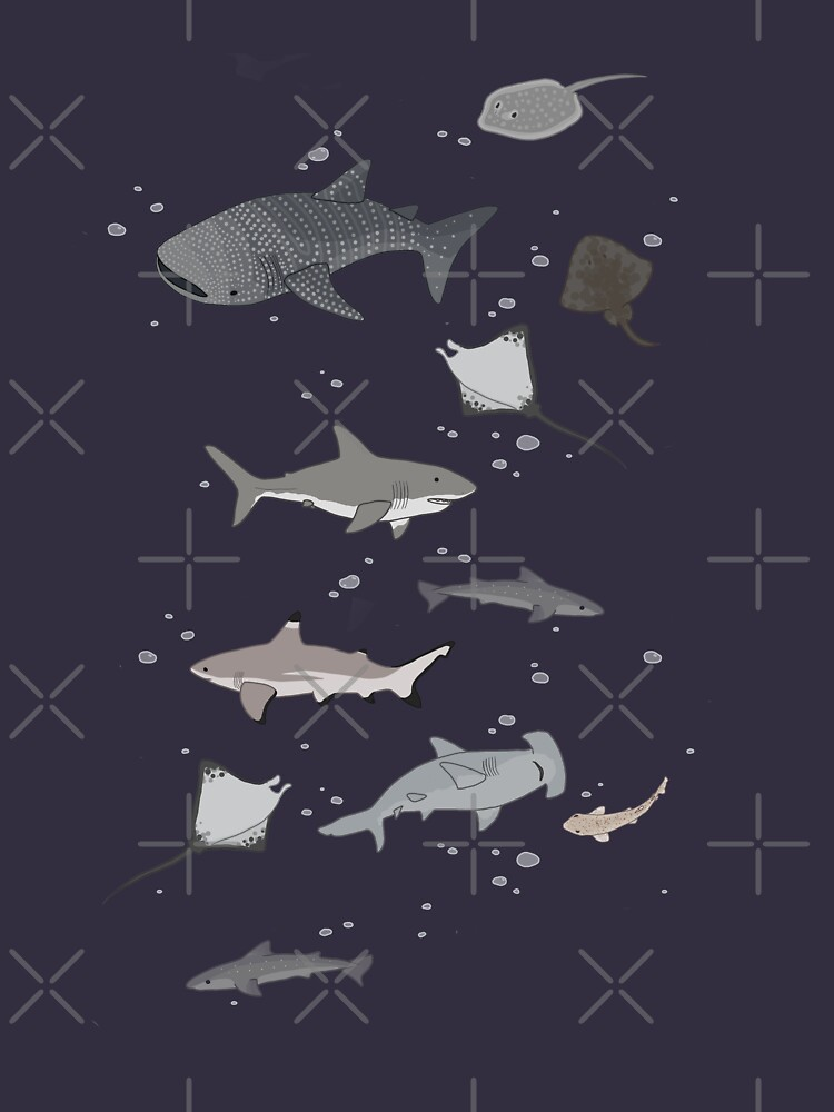 Tiburones y Rayos de Leylaleya