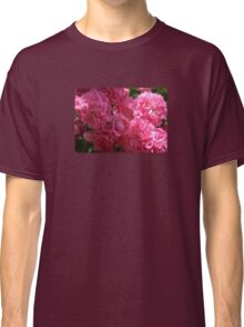 Pink Roses In Sunlight Classic T-Shirt