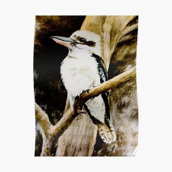 Kookaburra Sits in the Old Gum Tree Poster