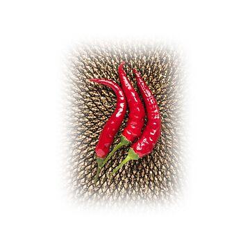 Chili & sunflower by acasali