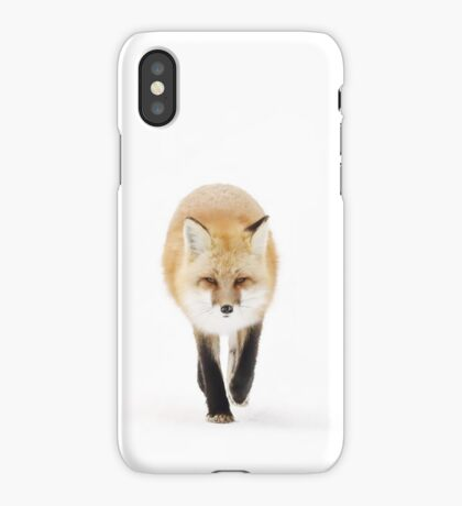 Fox on the move - Algonquin Park iPhone Case/Skin