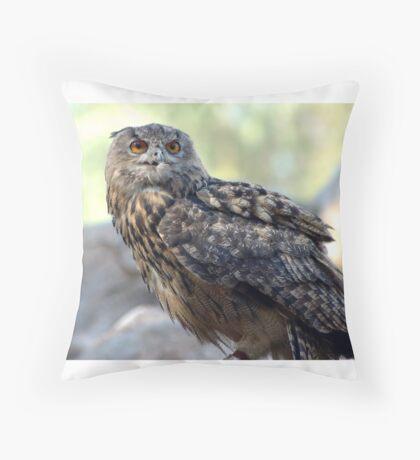 Eagle Owl Throw Pillow