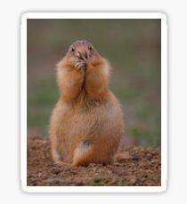 Prairie Dog with Funny Expression Sticker