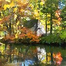 White House by Lake in Autumn by Susan Savad