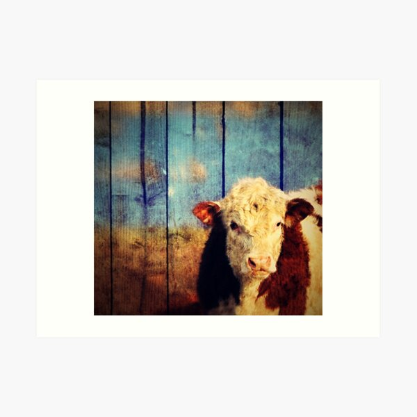 ART PRINT FROM ORIGINAL WATERCOLOR ACEO,ABSTRACT CUTIE COW CHEWING FACE