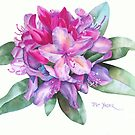 Washington Rhododendron by Pat Yager