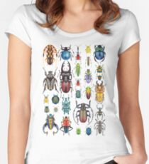 Beetle Collection Women's Fitted Scoop T-Shirt