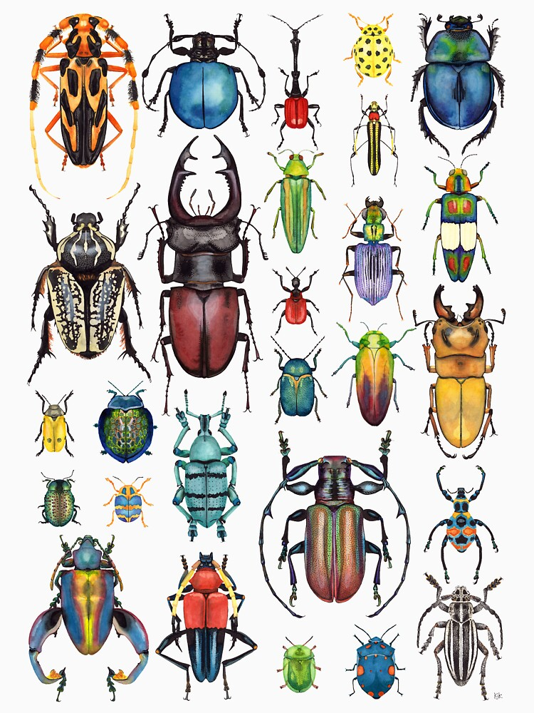 Beetle Collection by KellyJadeART