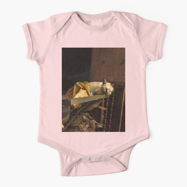 Cat sleeping in the dump of my city Short Sleeve Baby One-Piece