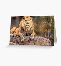 Once upon a time Lion Canvas Print, Photographic Print, Art Print, Framed Print, Metal Print, Greeting Card, iPhone Case, Samsung Galaxy Case, iPad Case, Throw Pillow, Tote Bag, Greeting Card
