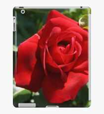 Climbing Red Roses iPad Case/Skin