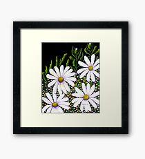 Daisy Patch Framed Print