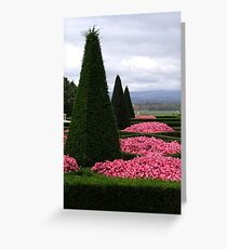 Castle Grounds Greeting Card