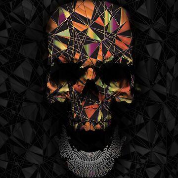 Geometric Skull by nicebleed