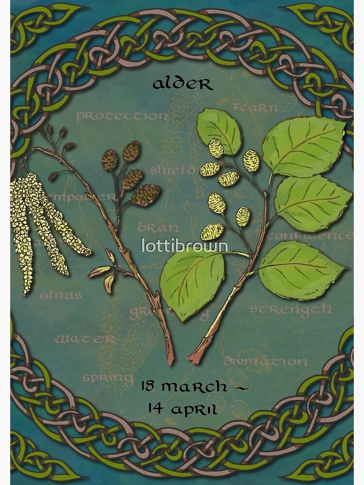 Tree Calendar Alder by lottibrown