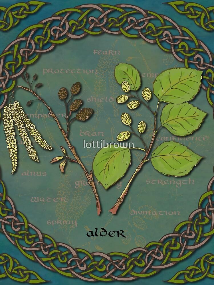 Celtic Alder by lottibrown