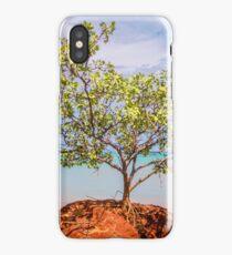simpson beach mangorve tree  iPhone Case/Skin