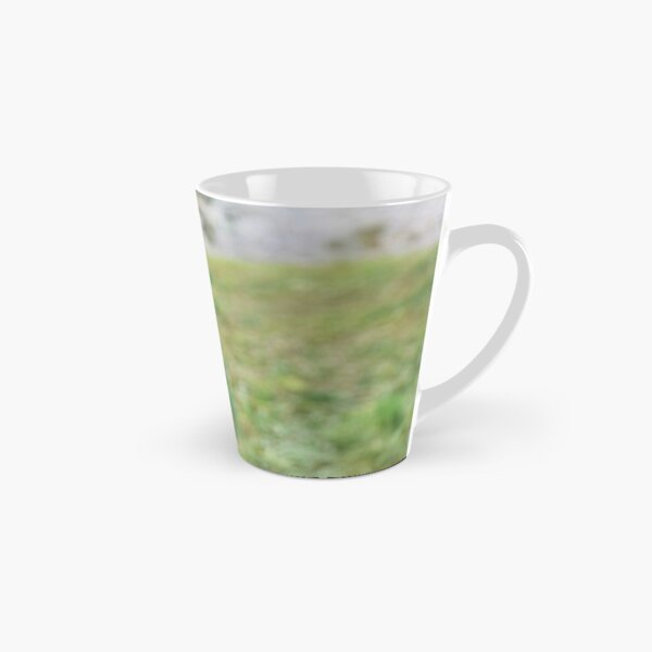 What about flying Mug long