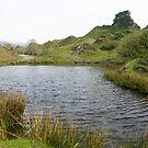 Fairy Glen on The Isle of Skye by Sue Robinson