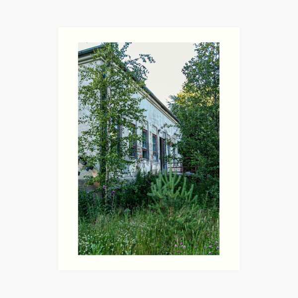 A House in the Woods Art Print