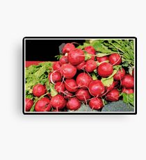 Food Photography | Kitchen Art | Red Radish Harvest | Radishes Canvas Print