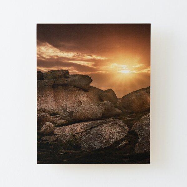 Perro Rocas Atardecer Lámina montada de madera