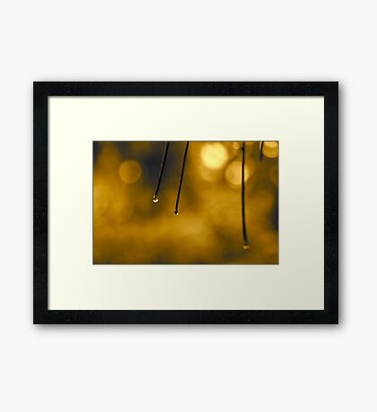 Just a Drop or Two Framed Print