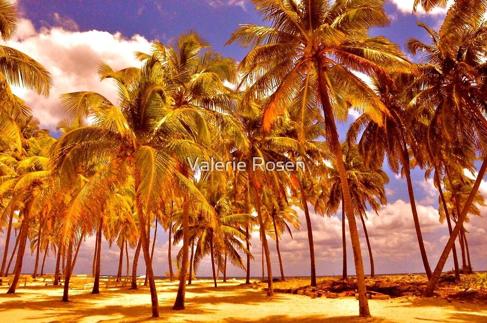 Palms on Half Moon Caye II  by Valerie Rosen